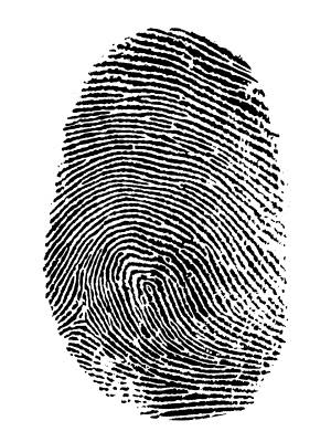 Understanding the Twelve-Five Standard Security (TFSSP) Program