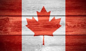Canadianflag_wood_securitypage